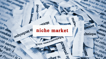 5 Tips to Become a Digital Superstar in Your Niche Market SalesFish B2B Sales Strategies